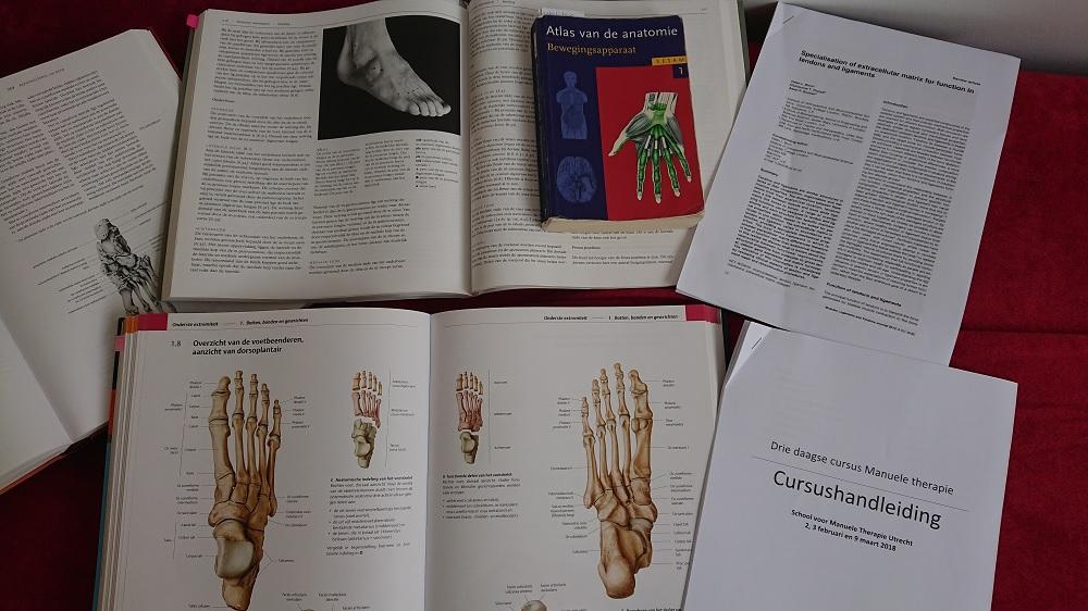 Cursus voet enkel Fysiotherapie Zoetermeer