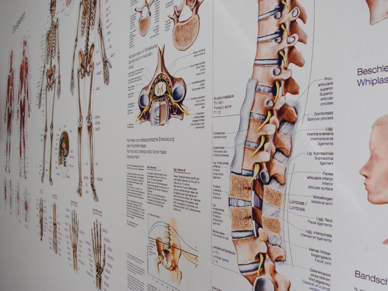 rokkeveen-fysiotherapie-zoetermeer