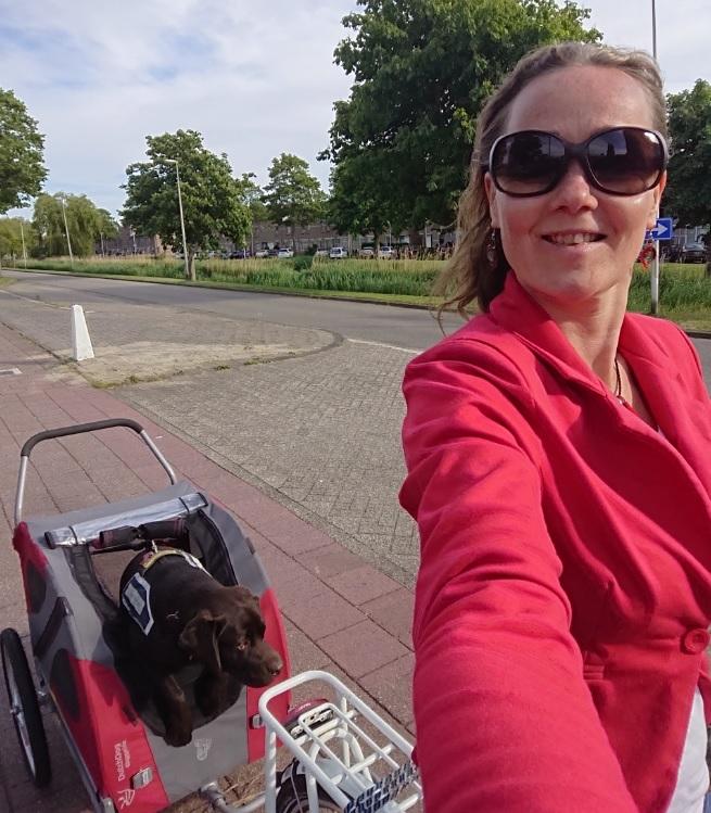 tjibbe-zoetermeer-hulphond